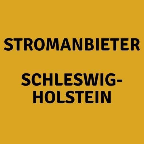 Der Stromanbieter Schleswig-Holstein