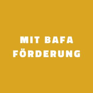 Mit BAFA Förderung Energie Audit